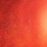 Окрасы кошек / Лиловый (лайлак, лавандовый, платиновый, изабелловый)